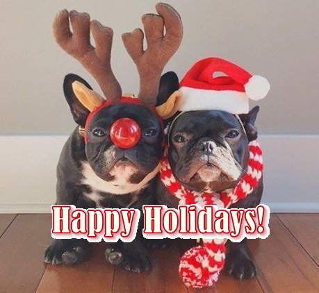 Happy holidays from the REPORTER team!